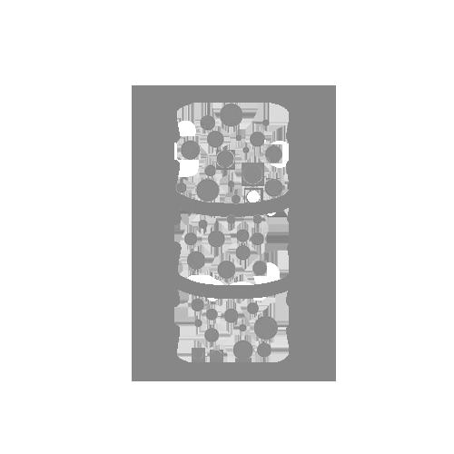 osteoporosi icona