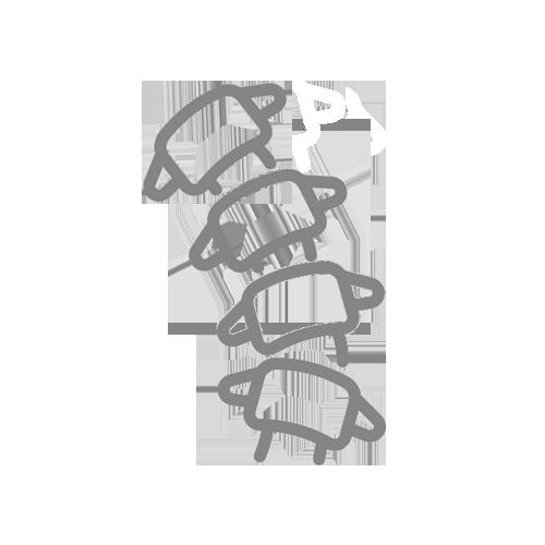 sbilanciamento sagittale icona
